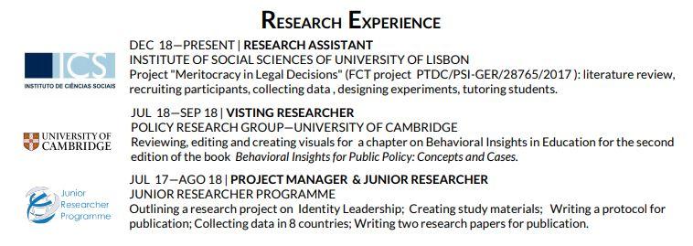 cv academico experiencia de investigacao